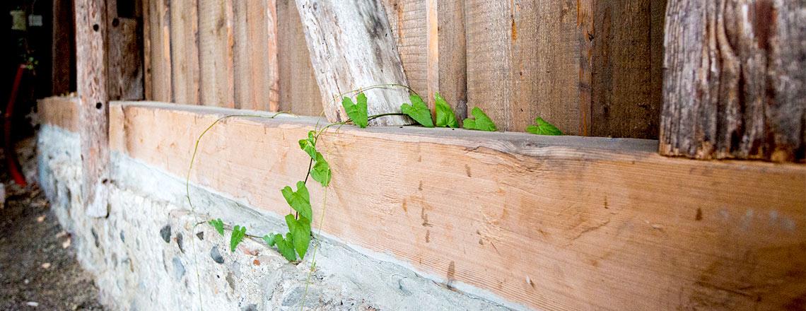 Joos Holzbau